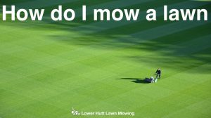 Lower Hutt Lawn Mowing